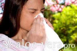 aloe vera allergi